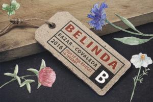 Bazar Belinda Directorio de Empresas Covaleda Ayuntamiento